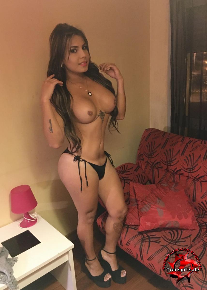 Foto Nr. 105979 von Shemale Trans Camila