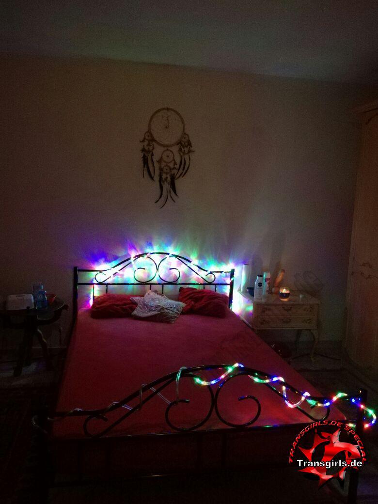 Foto Nr. 105533 von Shemale Trans Trans Wohnung