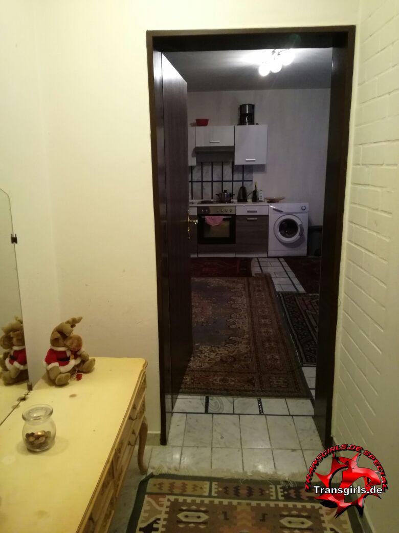 Foto Nr. 105530 von Shemale Trans Trans Wohnung
