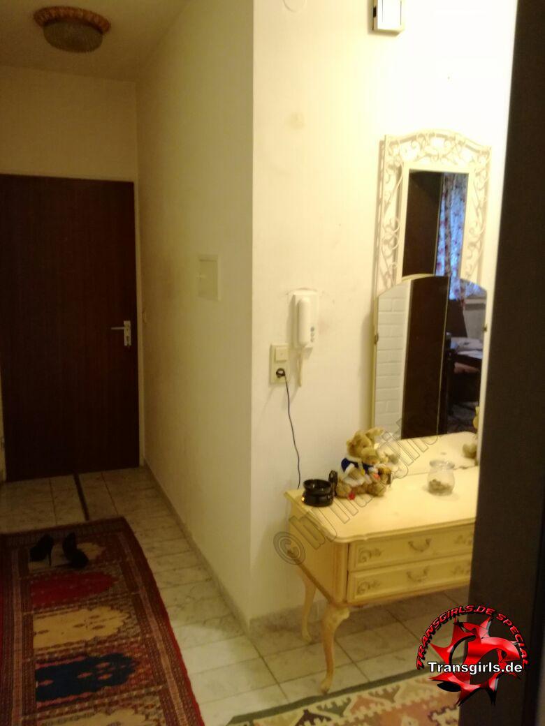 Foto Nr. 105535 von Shemale Trans Trans Wohnung