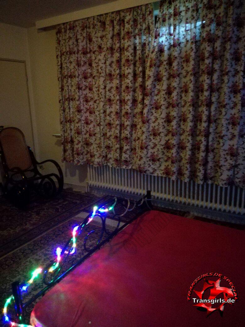 Foto Nr. 105534 von Shemale Trans Trans Wohnung