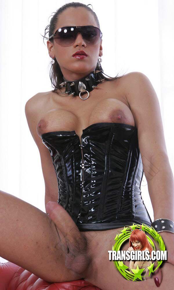 Foto Nr. 2767 von Shemale Trans Camilla Jolie