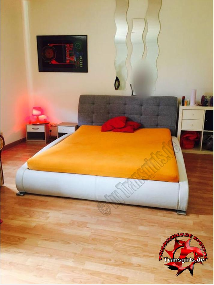Foto Nr. 107918 von Shemale Trans Top Appartement Hannover