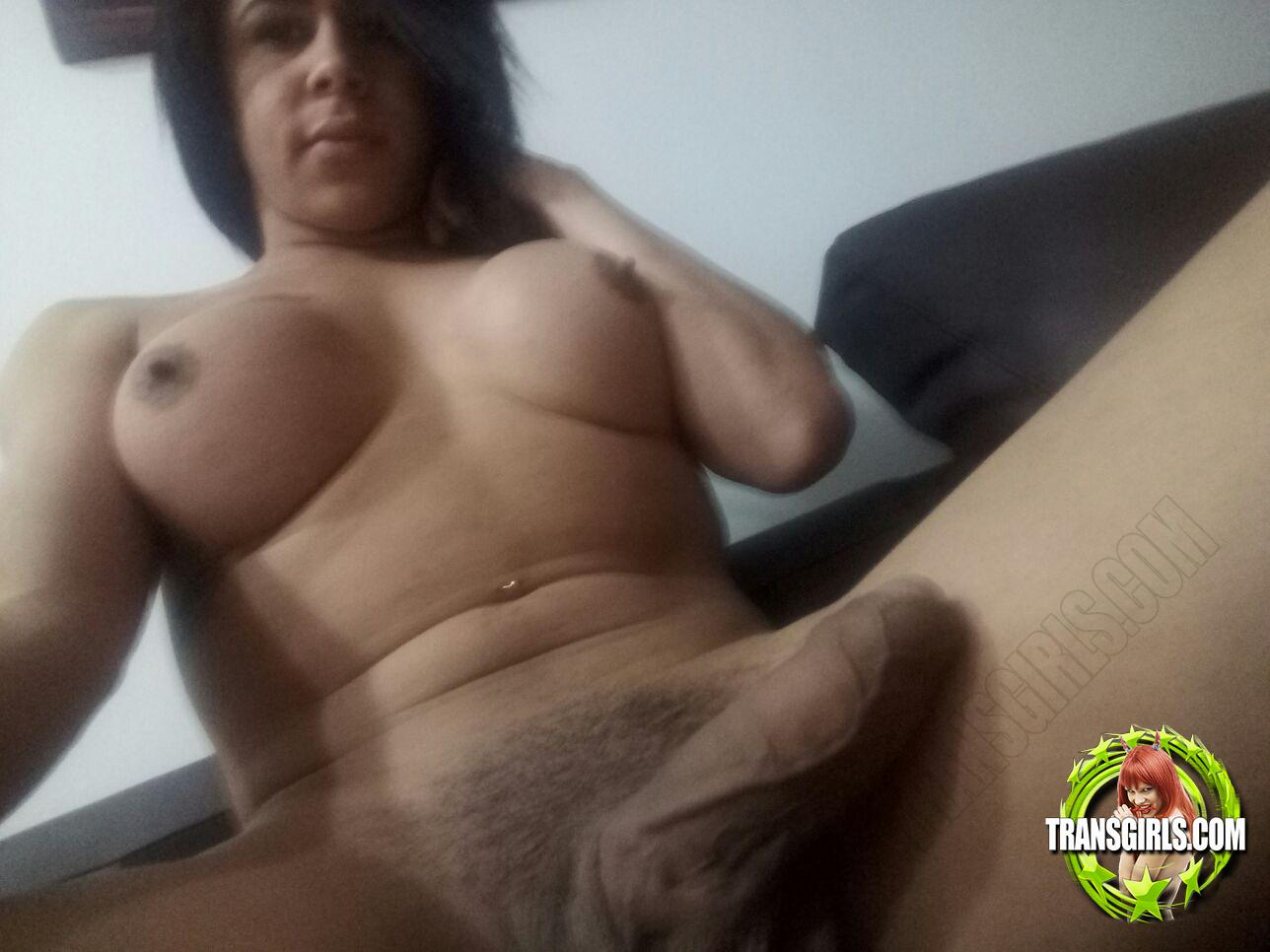 Foto Nr. 2858 von Shemale Trans Ariana Ketely