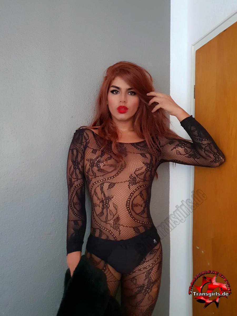 Foto Nr. 109289 von Shemale Trans Pamela Bahamon