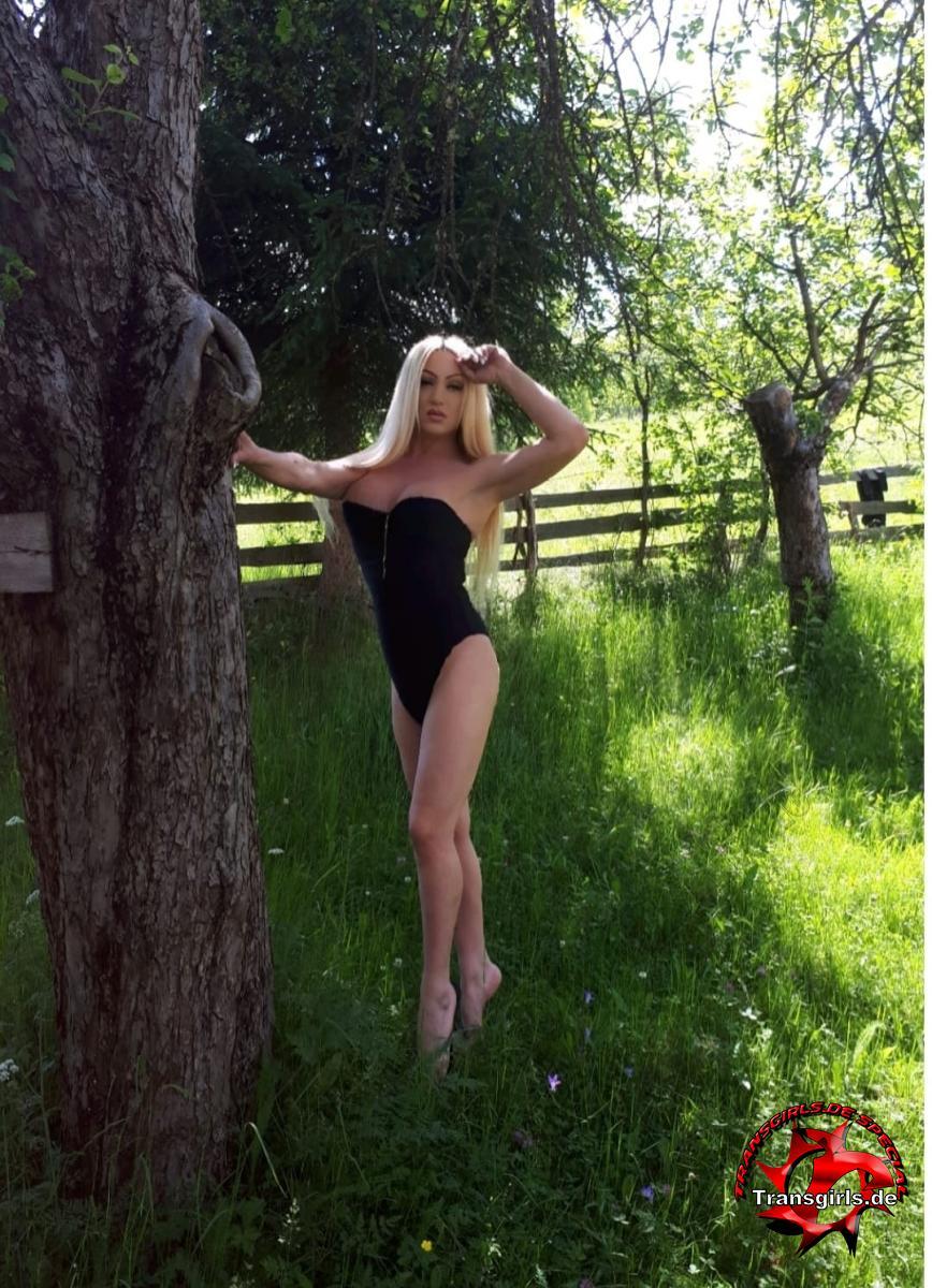 Foto Nr. 136103 von Shemale Trans Vanessa Bacardi