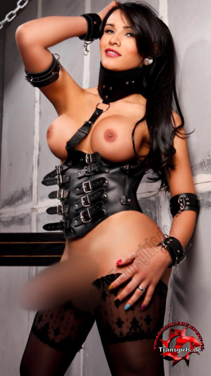 Foto Nr. 110524 von Shemale Trans Silvana Diosa Sexy