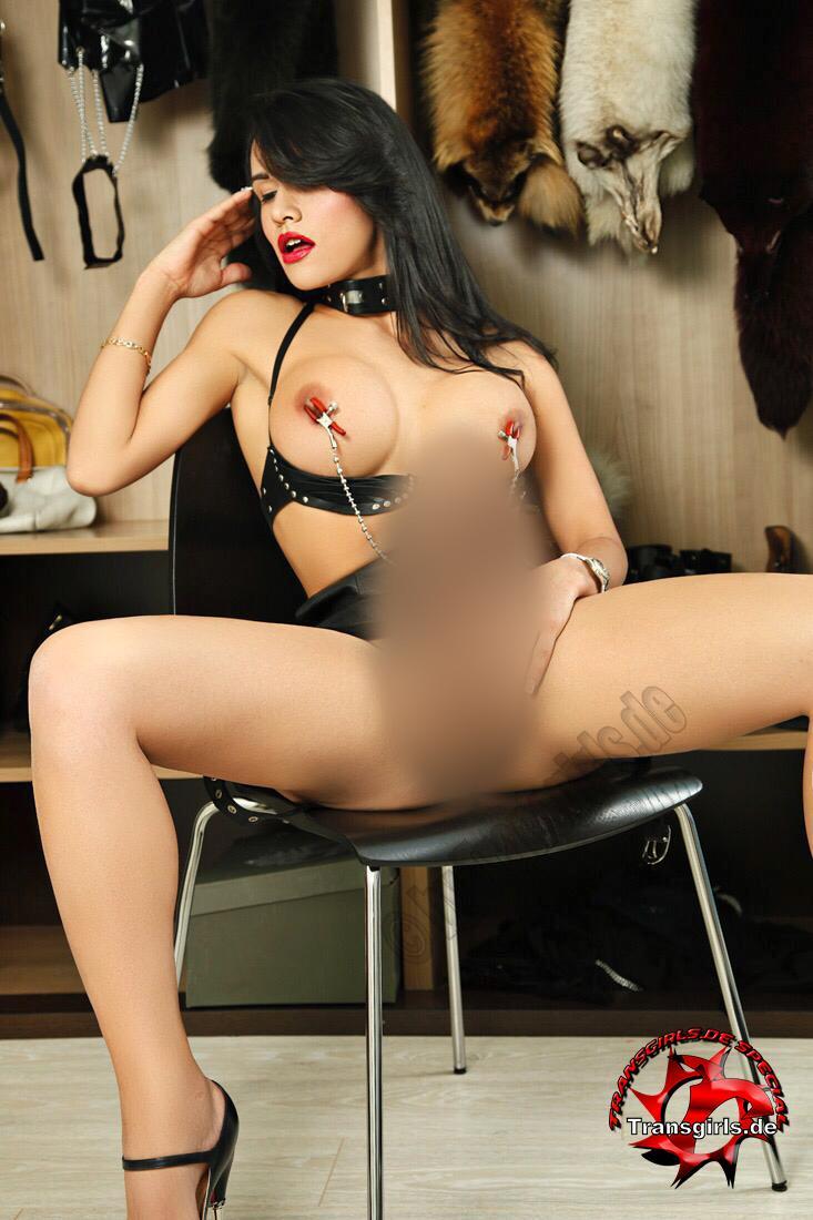 Foto Nr. 114976 von Shemale Trans Silvana Diosa Sexy
