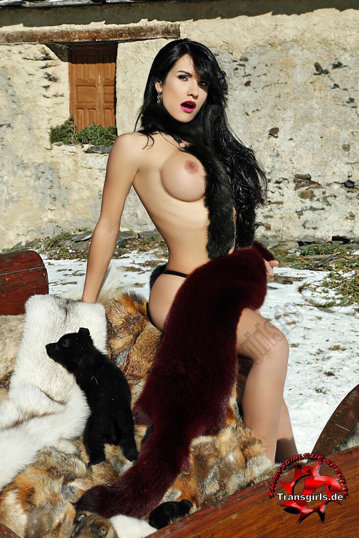 Foto Nr. 114952 von Shemale Trans Silvana Diosa Sexy