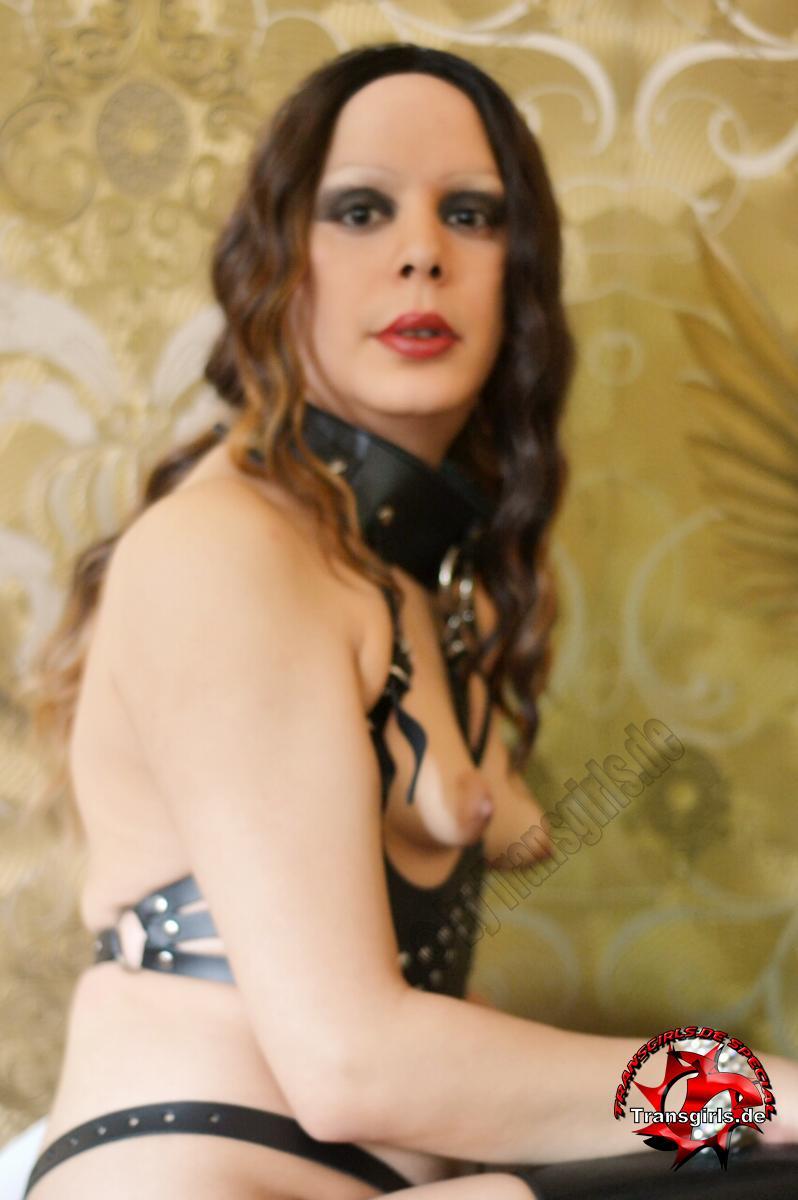 Foto Nr. 111413 von Shemale Trans Jasmin