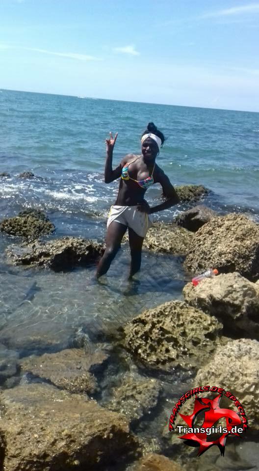 Foto Nr. 112181 von Shemale Trans Luana Black XXL