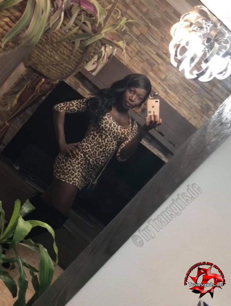 Foto Nr. 112158 von Shemale Trans Luana Black XXL