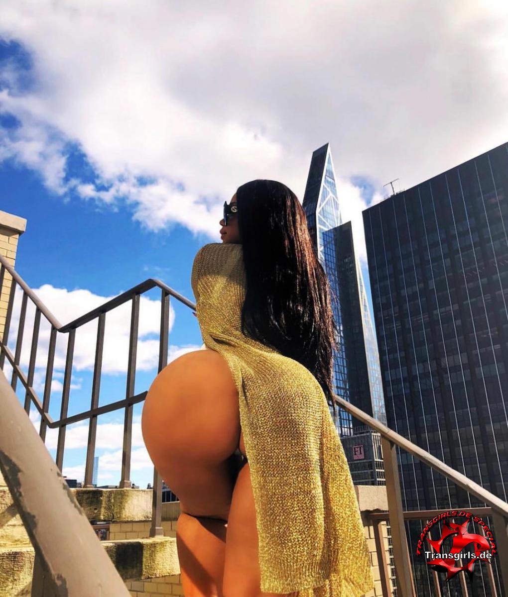 Foto Nr. 117515 von Shemale Trans Adriana