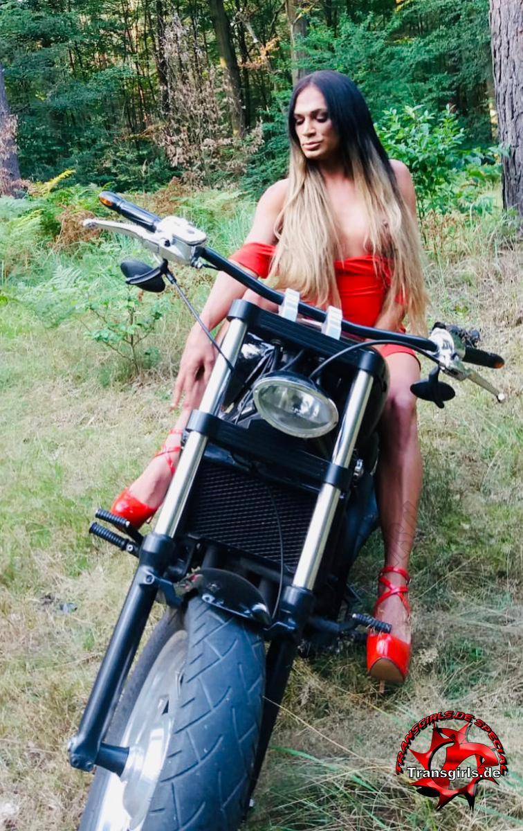 Foto Nr. 118870 von Shemale Trans Donatella