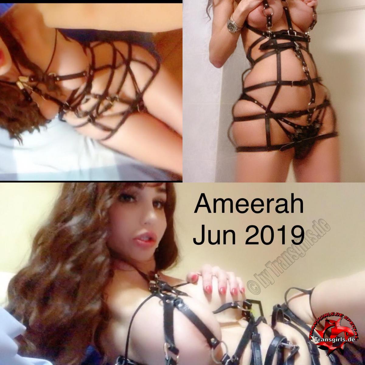 Foto Nr. 118826 von Shemale Trans Ameerah