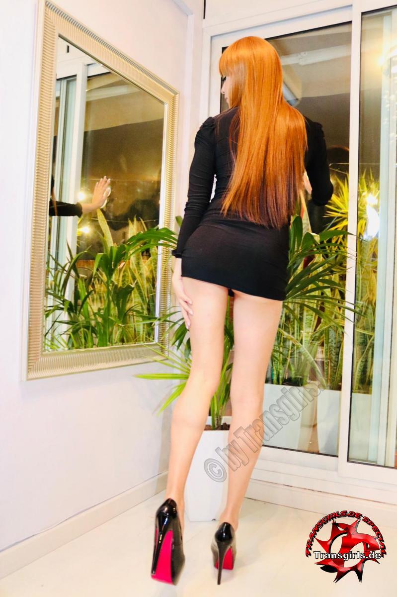 Foto Nr. 132936 von Shemale Trans Valentina