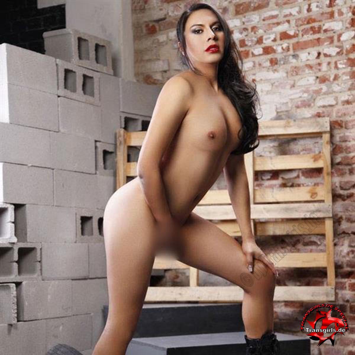 Foto Nr. 105737 von Shemale Trans Viviana Camila