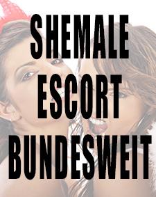 Vorschaubild Shemale Escort Bundesweit